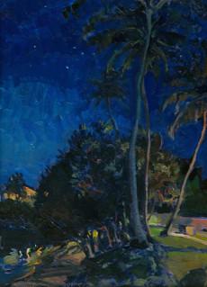 Coconuts & Stars