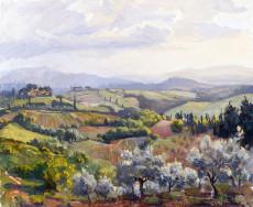 Chianti Fields