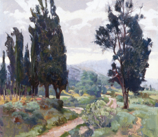Rainy Day Cypress