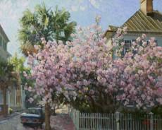 Blossoms on Legare