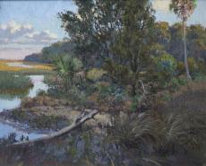 Lowcountry Fauna