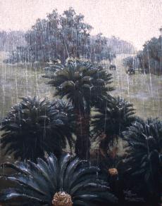 Plum Orchard Rain