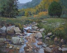 Native Brook